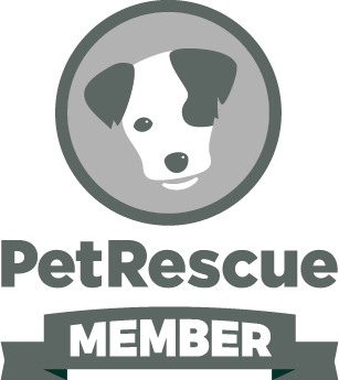 Rescuing Our Companion Animals