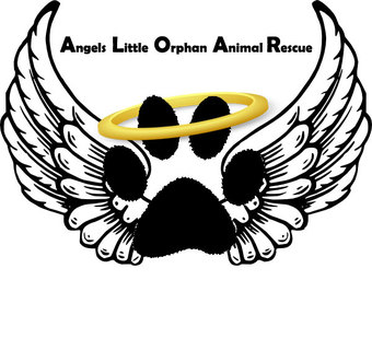 Angel's Little Orphan Animal Rescue