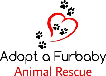Adopt a Furbaby Animal Rescue