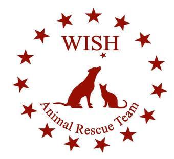 Large wish logo