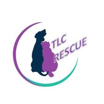 Large tlc logo etc  2