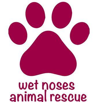 Large logo jpg
