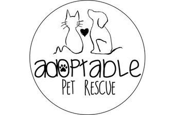 Adoptable Pet Rescue