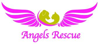angels rescue