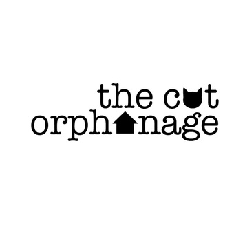 Large the cat orphanage insta facebook 01