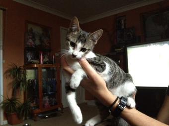 Photo of Princess Lily