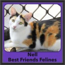 Photo of Nell