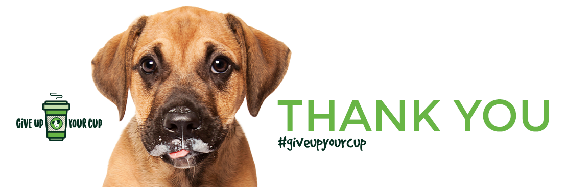 Thank you from PetRescue!