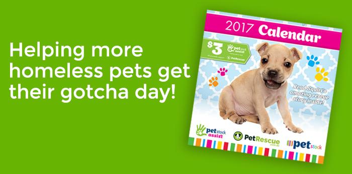 2017 PetRescue PETstock Calendar