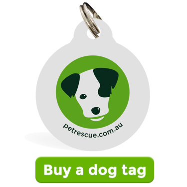 Buy a dog tag