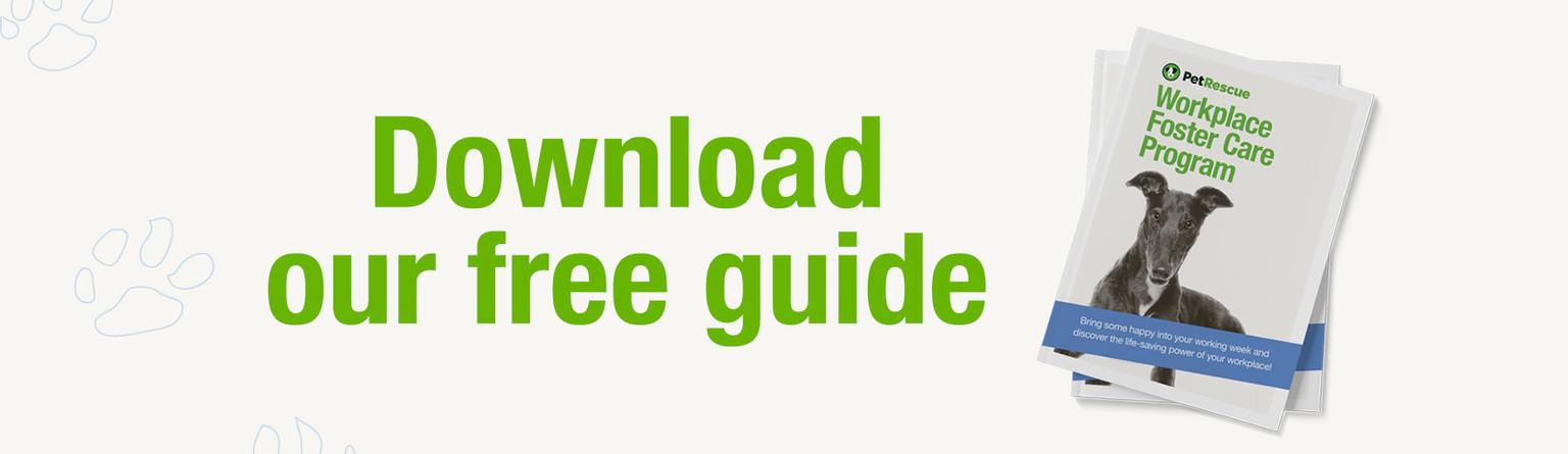 Download-our-free-guide