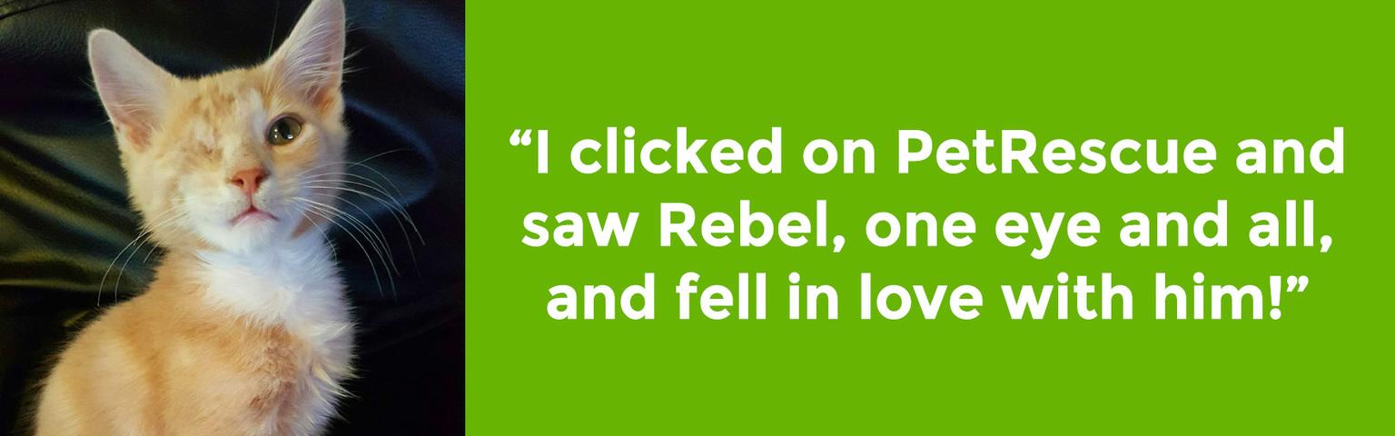 Rebel Charli