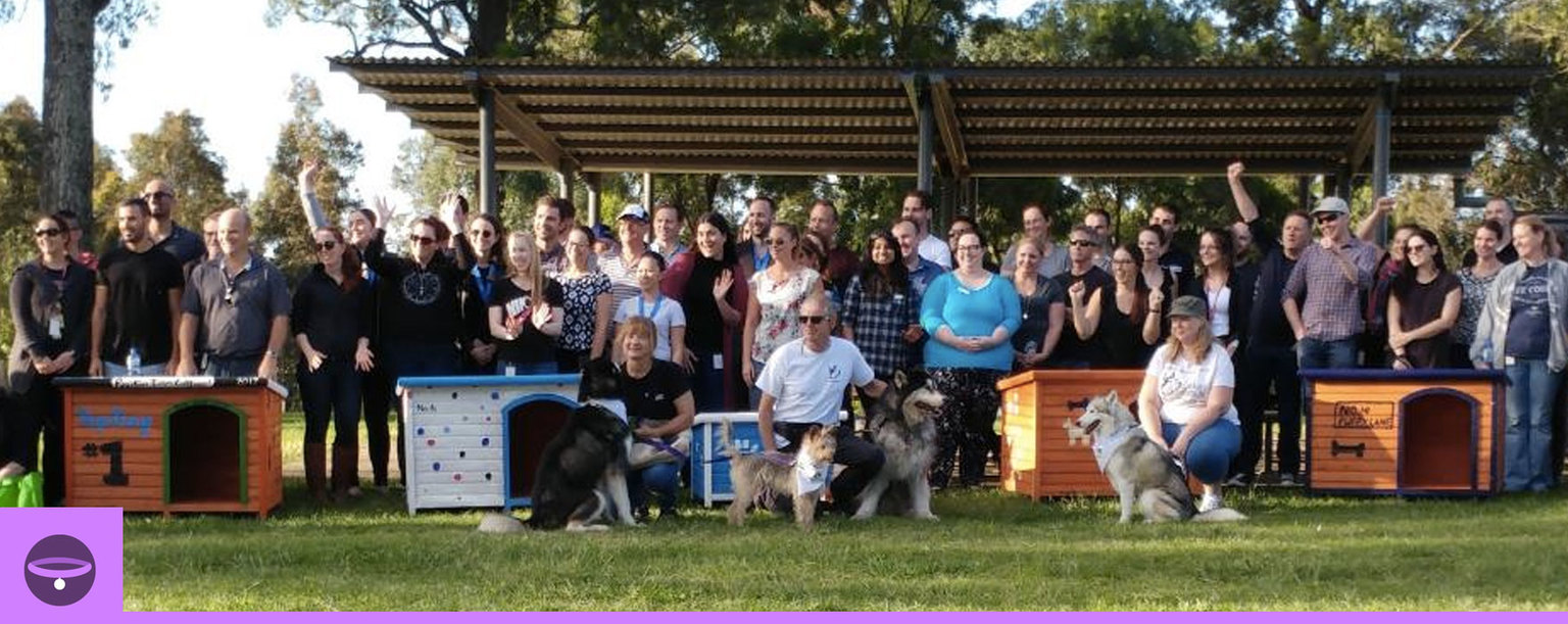 Woolworths kennel building day - Kennels donated to AMRAA