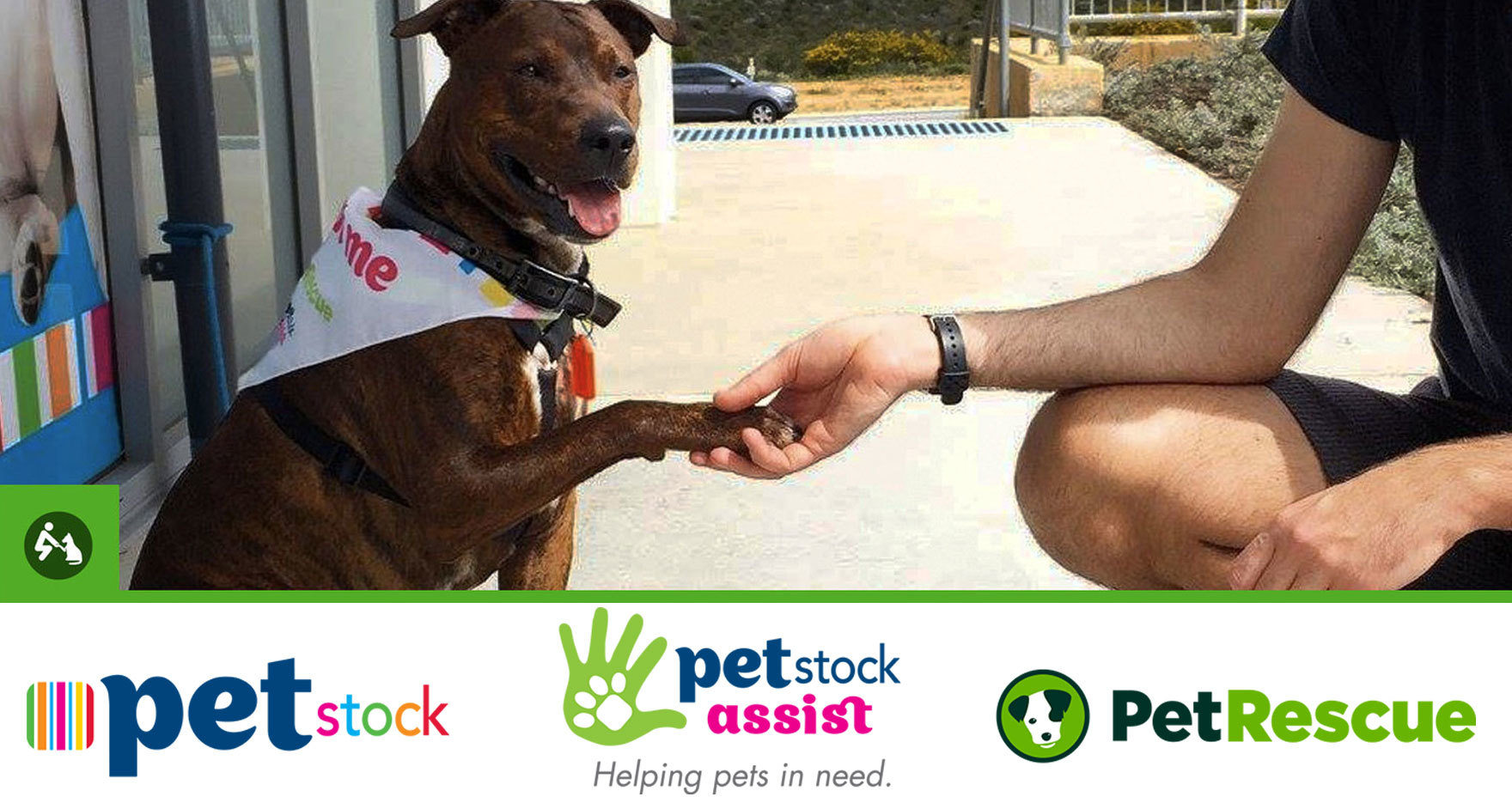Petstock National Pet Adoption Day 2018 PetRescue