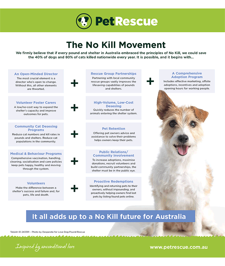 No Kill infographic