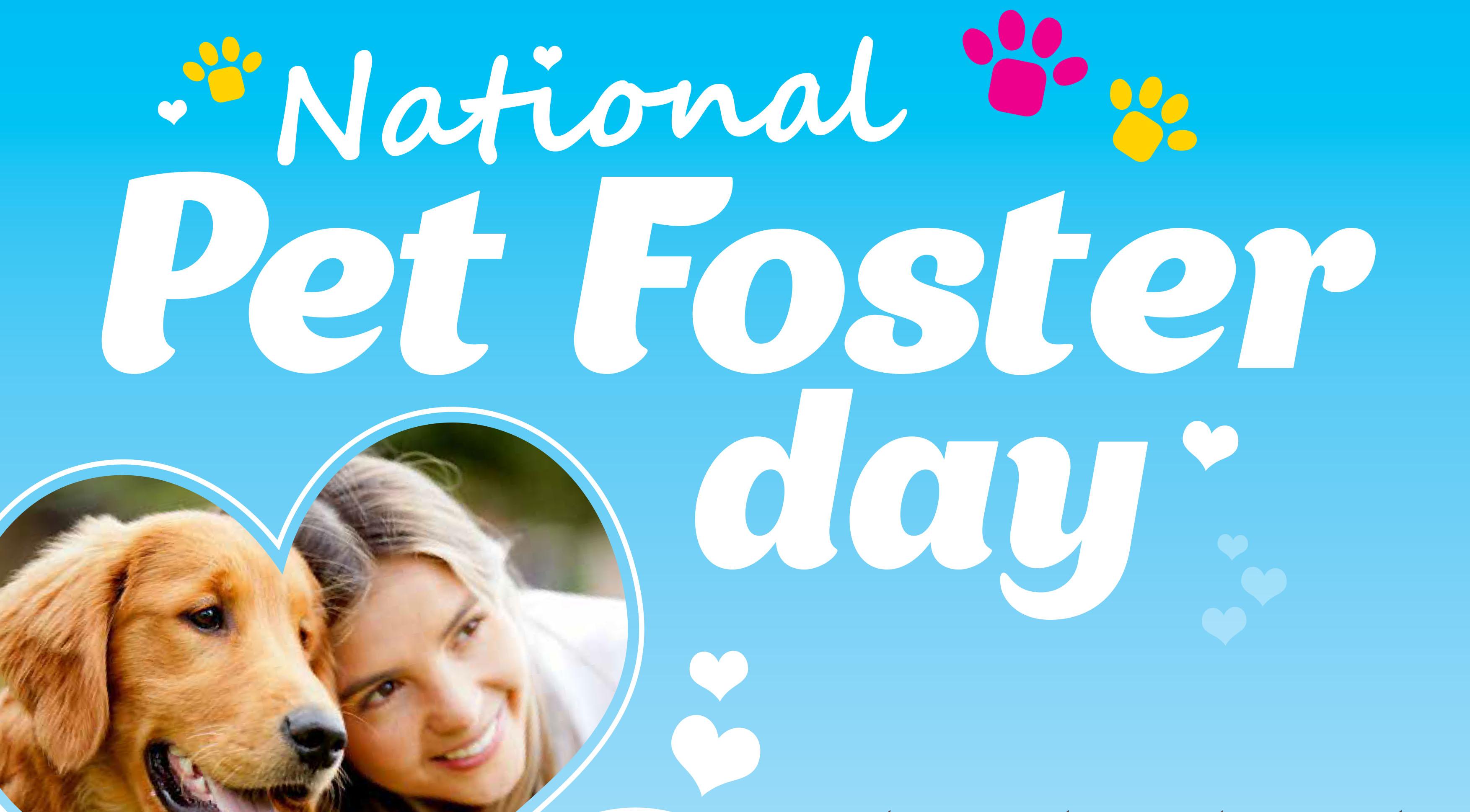 PETstock Assist National Pet Foster Day