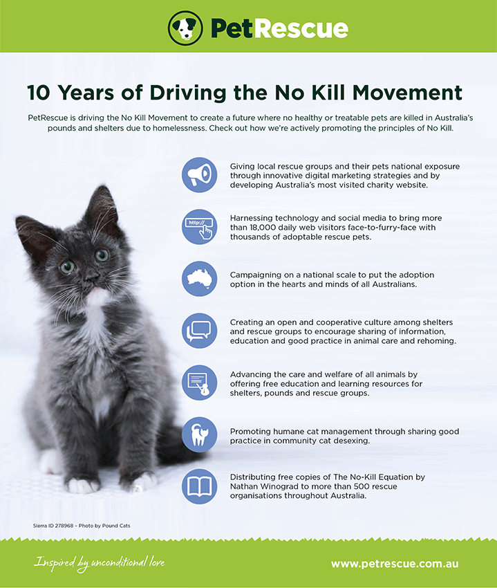 Infographic - 10 Years of Supporting No Kill
