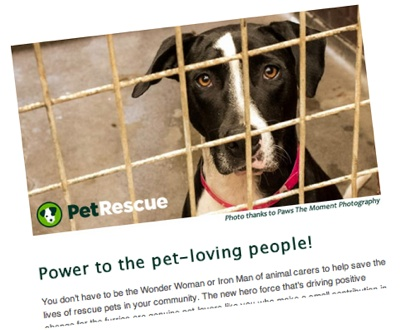 Friends of PetRescue Newsletter