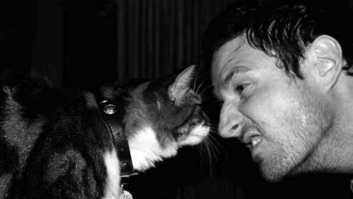 Wil Anderson cat person