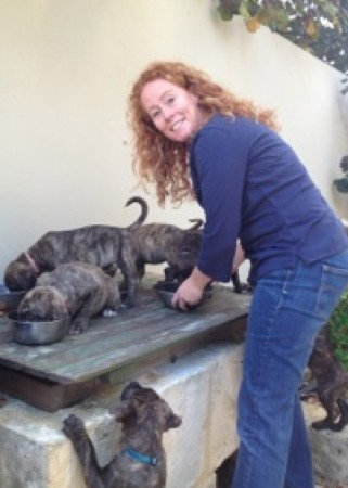 Pet foster caring saves lives!