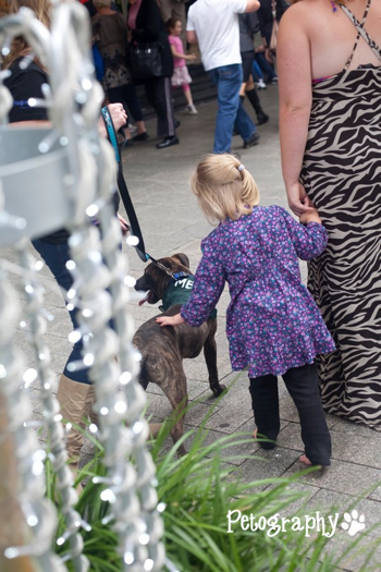 People of all ages feeling the love at PetRescue's adoption event