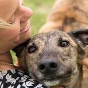Pet Fostering