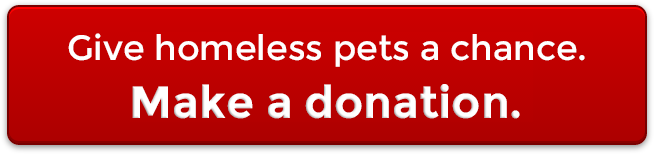 Donate to PetRescue