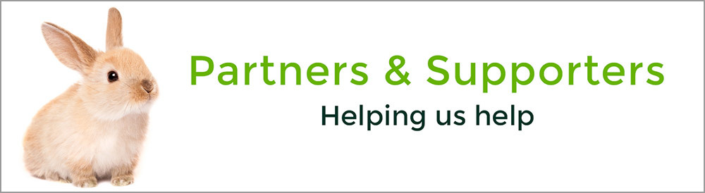 Our Partners and Supporters
