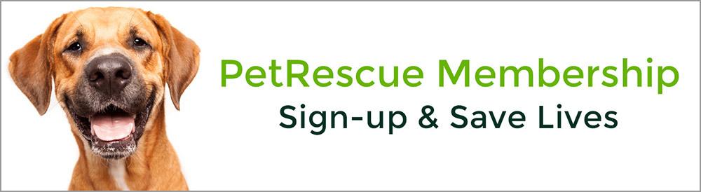 Membership Sign Up